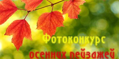 Фотоконкурс осенних пейзажей в нашей группе ВКонтакте - присоединяйтесь!