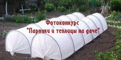 """Фотоконкурс """"Парники и теплицы на даче"""" в нашей группе ВКонтакте - присоединяйтесь!"""