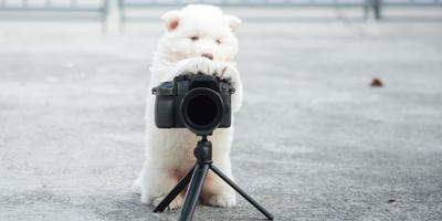 Готовимся к новому этапу фотоконкурса!