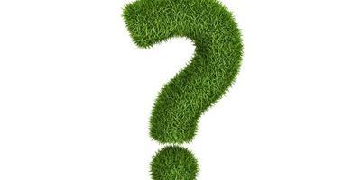 Посадила газон, а он получился неровный, как бы кочками! Как можно исправить?