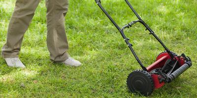 Какие бывают газонокосилки и как выбрать нужную