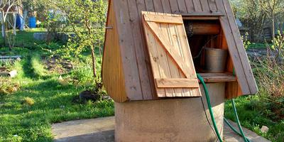 Как обойтись на даче без холодильника
