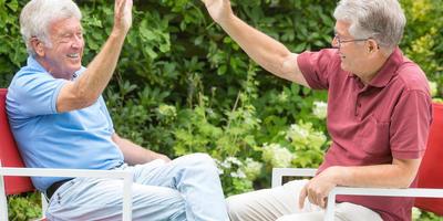 Как избежать конфликтов с соседями по даче