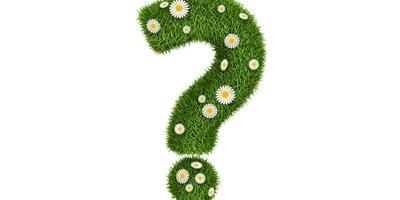 Хочу купить землю, но настораживает вполне конкретный запах навоза. Должно ли так вонять или запах вскоре пропадет?