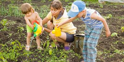 Как ухаживать за огородом вместе с малышами – советы многодетной мамы