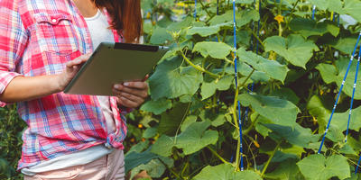 Как создать собственную систему земледелия