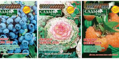 """Стартовал III этап конкурса """"Урожай-2016""""!"""
