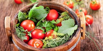 Рецепт соленых помидоров