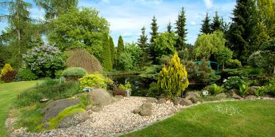 Садовые долгожители: как выбрать виды и сорта деревьев