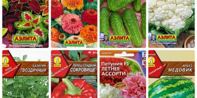 Отзывы о семенах производителя Аэлита