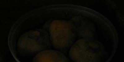 Оладьи, котлеты и запеканка из брюквы