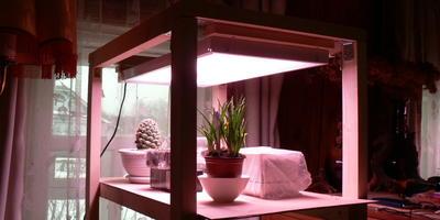 """Светодиодный светильник """"Люмика Квартет- 2-У-25(фито)"""" для выращивания растений и рассады"""
