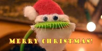 Санта-Клаус съел свои усы