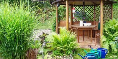 Красивый сад без лишних трат: как сэкономить на материалах