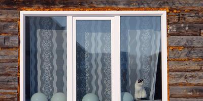 Пластиковые окна на даче: 5 вопросов мастеру