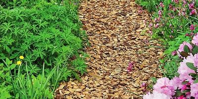3 способа сделать садовую дорожку