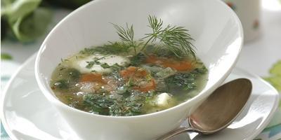 Зеленый стол: рецепты супов из шпината, щавеля и крапивы