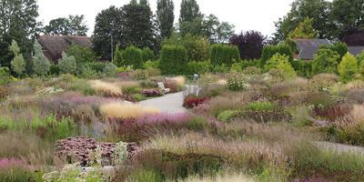 Сады Пита Удольфа: новая волна ландшафтного дизайна