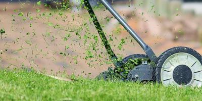 Техника для ухода за газоном: триммеры, газонокосилки, бензокосы, ножницы