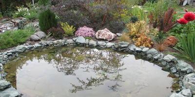 Садовое зеркало