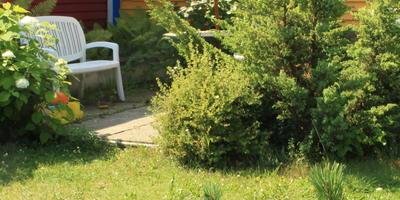 Добро пожаловать в сад моих знакомых