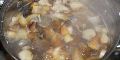 """Картошка с грибами """"УДачный ужин"""""""