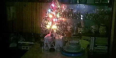 Новый Год примчался и ему понравилось...