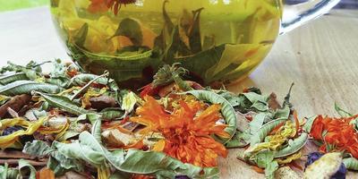 Нечайная радость: рецепты для здоровья и удовольствия