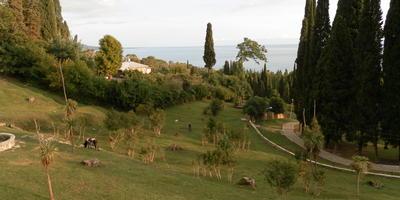 Абхазия. Возвращение в прошлое. День первый