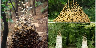 9 чудес сада, которые мы разберем по полочкам