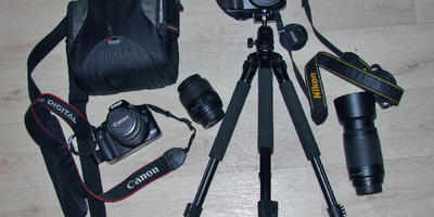 Конкурс дачных фотографий в вопросах и ответах