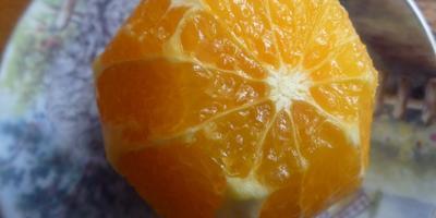 Курица в апельсиновом соусе САВАННА