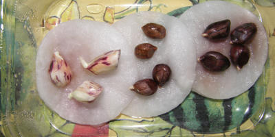 Три орешка для Золушки