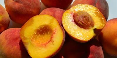 Персики-гриль с земляникой