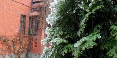 Ледяной коллапс в Калужской области, или Ледяная сказка