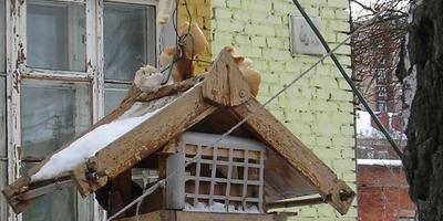 Столовая с разнообразным меню)))