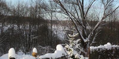 Зима в нашей деревне