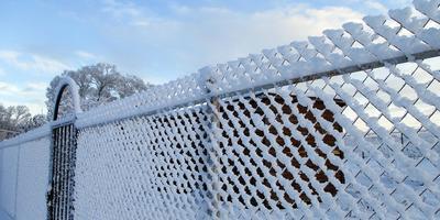 Забор приукрасился