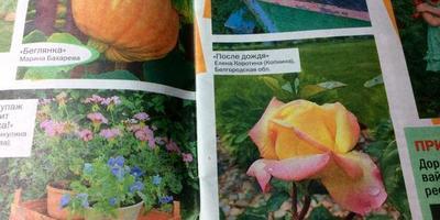 Мое фото в журнале