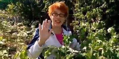 Сорняки: видео о замещающем способе борьбы
