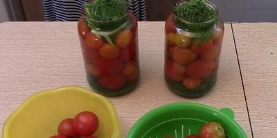 Томаты: рецепт заготовки с морковной ботвой