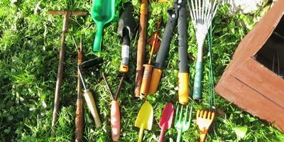 10 осенних дел в саду (видео)