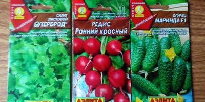 Выращивание огурца, редиса и листового салата у себя в квартире. Начало