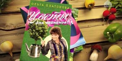 «Дачные феи»: большая премьера на телеканале «Бобёр»