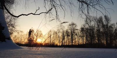 Вечерняя зима