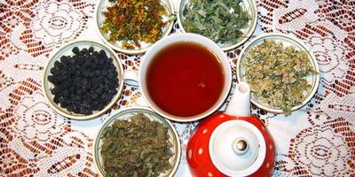 Чайные травы (облепиха, марьянник, кипрей)