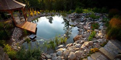 Бассейн на шести сотках: 10 красивых идей