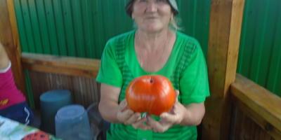 Башкирский батыр среди помидоров