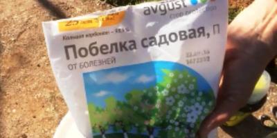 Чем белить деревья весной. Органическое земледелие