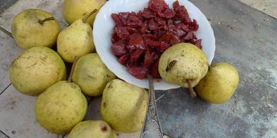 Чтобы муж объелся груш: опыт выращивания груш на подвоях